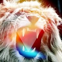 M.A.U. – Cheetah